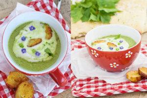 Suppe aus Wildkräutern