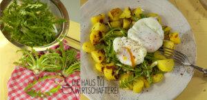 Löwenzahn Rezept für Salat